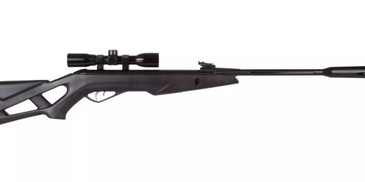 Best Air Rifle Review: Training and Pest Control - Cicero